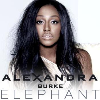 ALEX-BURKE-ELEPHANT