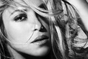 Shakira Rabiosa Pitbull
