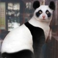 animali geneticamente photoshoppati-67