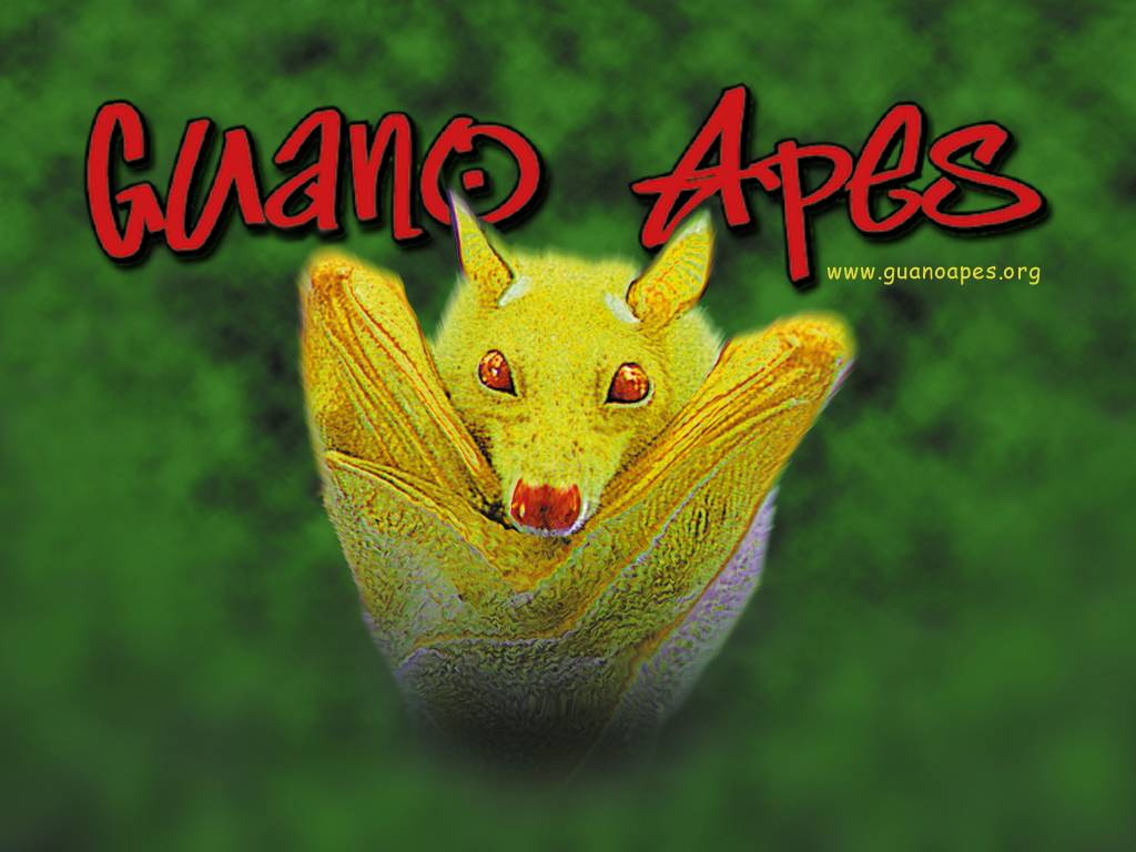 guano_apes_1024x768