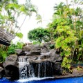 le foto hot di rihanna in bikini alle hawaii-51